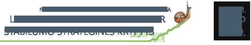 Lietuvos ekonomikos augimo ir stabilumo strateginės kryptys Logo